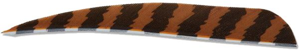 Buck Trail Feather Barred - Brown