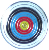 Alternative Archery Target Pin